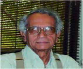 گفتگو با پرویز وندال، معماری پاکستان