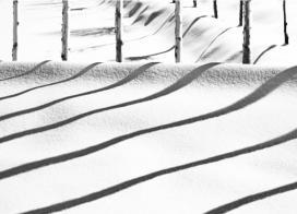 برف ،عكس ازعباس كيارستمى